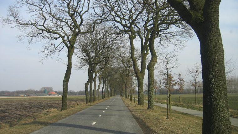 Avatar overal in Nederland?